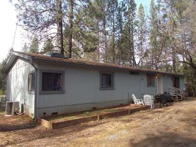 Wilseyville CA Mobile/Manufactured Sold: $295,000