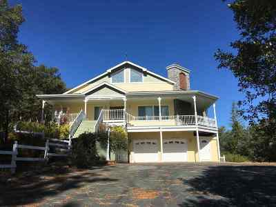 Jackson Single Family Home For Sale: 19200 W Clinton Road