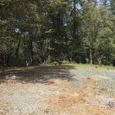 Pine Grove Residential Lots & Land For Sale: Cottonwood Ln