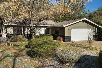 Pine Grove Single Family Home For Sale: 13609 Tony Ct.