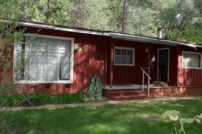 Pine Grove Single Family Home For Sale: 13330 Spagnoli Mine Rd.