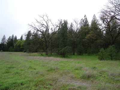 Pine Grove Residential Lots & Land For Sale: Homestead