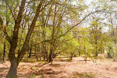 Pine Grove Residential Lots & Land For Sale: Payton Lane