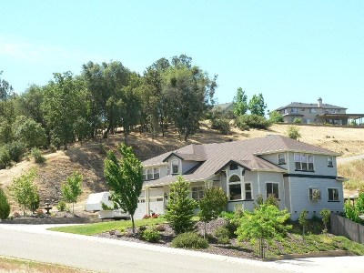 Sutter Creek Single Family Home For Sale: 285 Golden Hills Drive