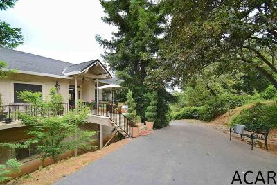 Sutter Creek CA Single Family Home For Sale: $539,000