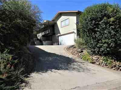 Sutter Creek Single Family Home For Sale: 125 Mark Lane
