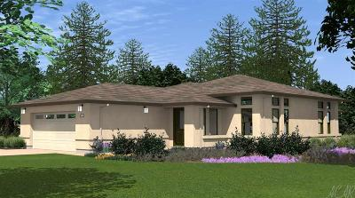 Jackson Single Family Home For Sale: 135 Emerald Lane