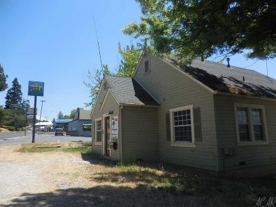 Pine Grove Single Family Home For Sale: 19710 State Highway 88