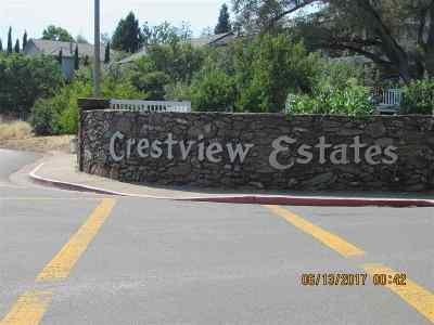 Sutter Creek Residential Lots & Land For Sale: 267 California Dr