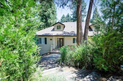 Pioneer Single Family Home For Sale: 18120 Circle View Drive