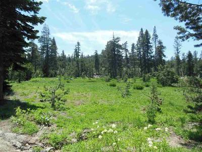Pioneer Residential Lots & Land For Sale: 47333 Highway 88
