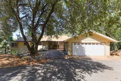 Pine Grove Single Family Home For Sale: 11474 Gold Strike Road