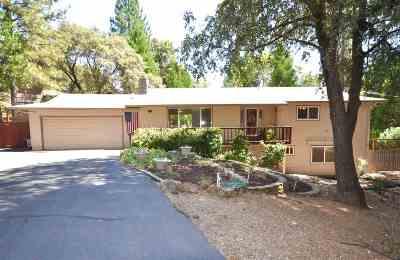 Pine Grove Single Family Home For Sale: 12502 Arrow Head