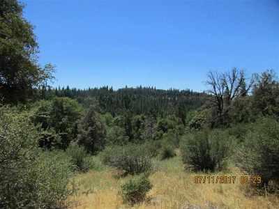 Pioneer Residential Lots & Land For Sale: Highway 88