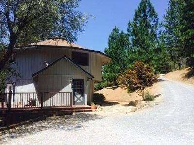 Pine Grove Single Family Home For Sale: 12518 Arrow Head Rd