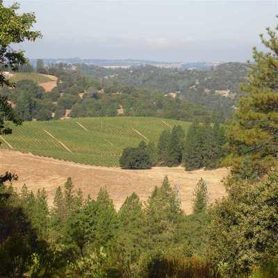 Jackson Residential Lots & Land For Sale: 10250 Ponderosa Way