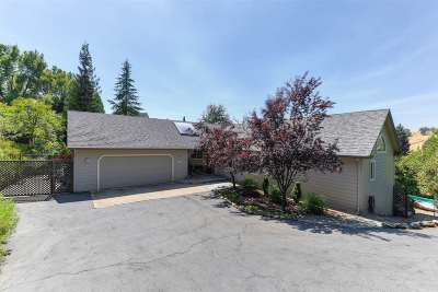 Sutter Creek Single Family Home For Sale: 249 Oak View Court