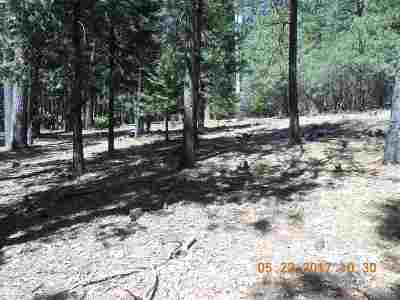 Pioneer Residential Lots & Land For Sale: 20007 Chaparral Drive