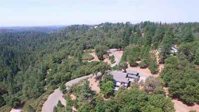 Fiddletown CA Single Family Home For Sale: $669,000