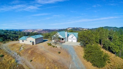 Sutter Creek Single Family Home For Sale: 12051 Twin Pines Road