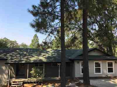 Pine Grove Single Family Home For Sale: 13809 Shadow Glen Court