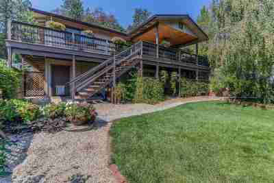 Pine Grove Single Family Home For Sale: 11541 Gold Strike Road
