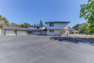 Sutter Creek Single Family Home For Sale: 13901 Shake Ridge Road