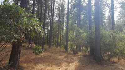 Sutter Creek Residential Lots & Land For Sale: 15636 Meadowlark Lane