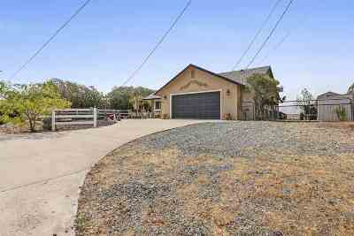 Amador County Single Family Home For Sale: 4475 Coyote Dr.
