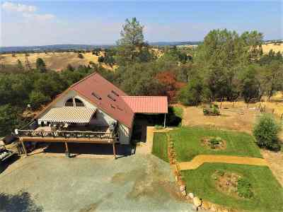 Fiddletown CA Single Family Home For Sale: $649,900