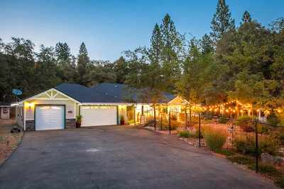 Amador County Single Family Home For Sale: 19175 Golden Oaks