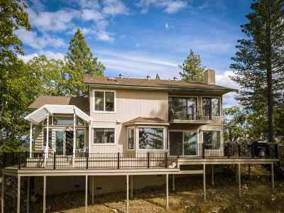 Sutter Creek Single Family Home For Sale: 16741 Shake Ridge Rd