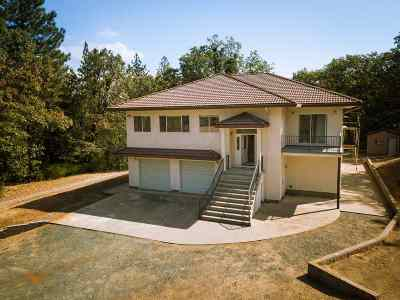 Pine Grove Single Family Home For Sale: 14000 Brandon