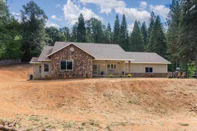 Amador County Single Family Home For Sale: 19616 Inspiration Drive