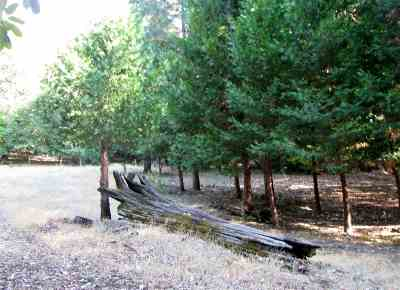 Pioneer Residential Lots & Land For Sale: 19950 Inspiration Drive
