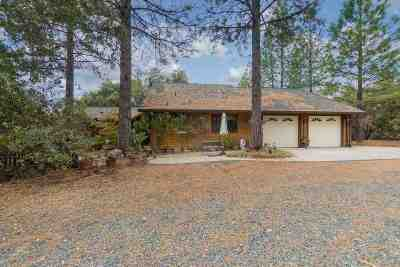 Pine Grove CA Single Family Home For Sale: $450,000