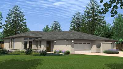 Amador County Single Family Home For Sale: 2049 Thomas Drive