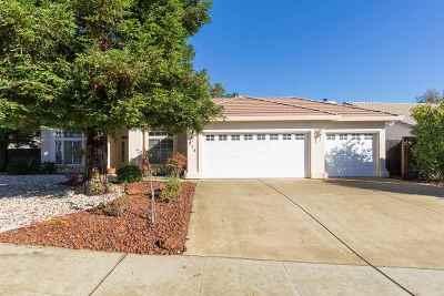 Amador County Single Family Home For Sale: 713 Vista Lane