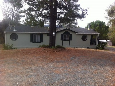 Sutter Creek Mobile/Manufactured For Sale: 14780 Booger Hollow Road