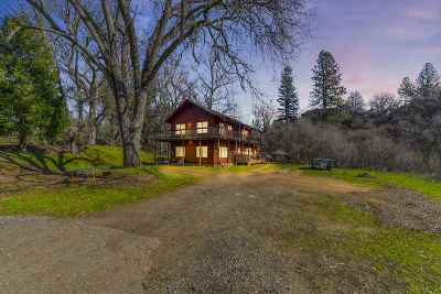 Sutter Creek Single Family Home For Sale: 13814 Sutter Creek Road
