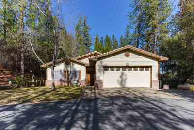 Pine Grove Single Family Home For Sale: 13850 Pine Park Loop