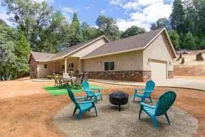Pioneer Single Family Home For Sale: 19616 Inspiration Drive