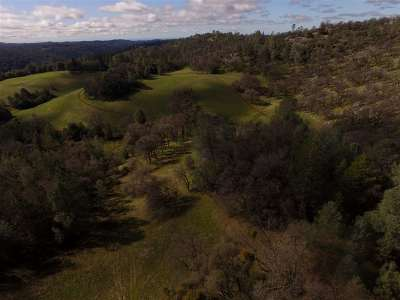 Fiddletown CA Residential Lots & Land For Sale: $199,000
