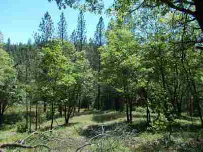 West Point CA Residential Lots & Land For Sale: $210,000