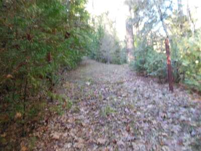 Sutter Creek Residential Lots & Land For Sale: 19221 Laurel Canyon Road