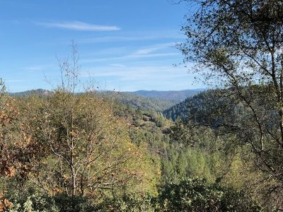 Sutter Creek Residential Lots & Land For Sale: Highview Way