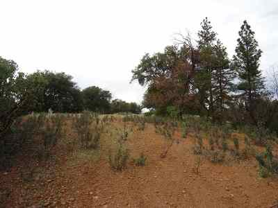 Sutter Creek Residential Lots & Land For Sale: Surrey Junctin Ln Lot 58