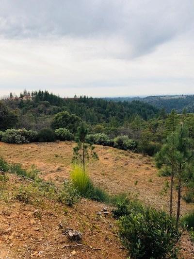 Sutter Creek Residential Lots & Land For Sale: 14745 Surrey Junction Lane