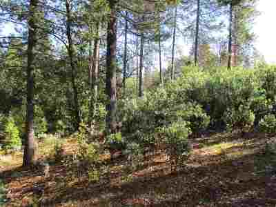 Pine Grove CA Residential Lots & Land For Sale: $80,000