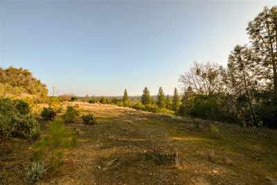 Sutter Creek Residential Lots & Land For Sale: 13000 Twin Pines Rd